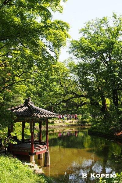 Как самостоятельно организовать поездку в Корею