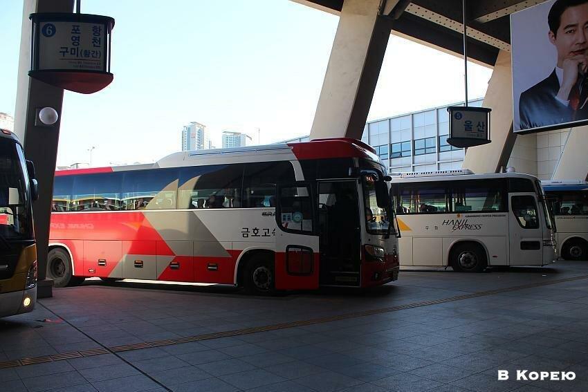 автобусы в Корее 2