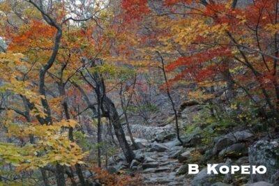 осень в горах